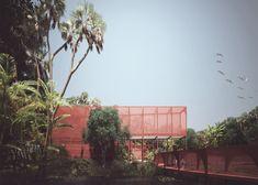 Louise Bjørnskov Schmidt plans rainforest complex for Panama