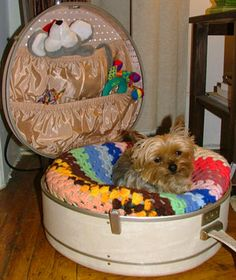 I am searching searching searching for some vintage luggage -- want to make Bailey a bed like this. Need two more pieces for Crimson and Itty Kitty!!