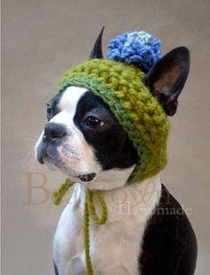 ¡Hoy ha vuelto el frio! Podéis entrar en ropitaparaperros.com y ver nuestras sudaderas para mascotas! #bulldog #frio