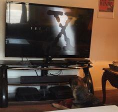 "Kyreah watching ""The X Files."""