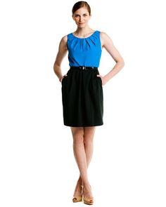 Eva Franco 'Felipa' Electric Blue & Black Belted Dress
