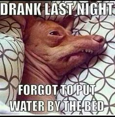 10 Horrible Things Hangovers Do To Your Body