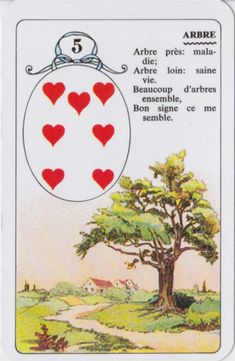 Tarot Card Meanings, Oracle Cards, Book Of Shadows, Signs, Tarot Cards, Parfait, Meant To Be, Passion, Books