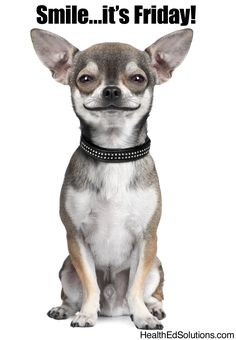 Smile...it's Friday! #smile #dogs #friday