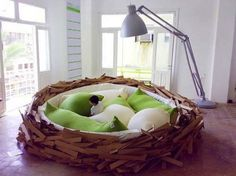 bird nest bed?