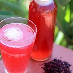 Hibiscus Tea Kombucha