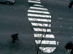 12 Pedestrian Crosswalk Artworks - Oddee.com (zebra crossing art)