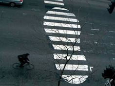 12 Pedestrian Crosswalk Artworks - Oddee.com (zebra crossing art)