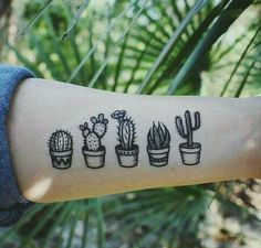 tattoos of potted cactus succulents black line drawing . Temporary tattoos of potted cactus succulents black line drawing .,Temporary tattoos of potted cactus succulents black line drawing . Mini Tattoos, Cute Tattoos, Body Art Tattoos, New Tattoos, Small Tattoos, Friend Tattoos, Drawing Tattoos, Awesome Tattoos, Flower Tattoos