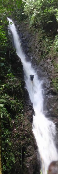 Not for everyone but if you're up for a verified adventure the waterfall rappelling tour at the  Family Brenes Finca Modelo is a challenge you won't soon forget.