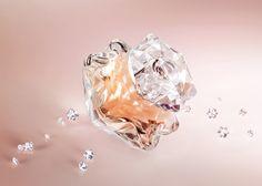 A Mont Blank legújabb női illatkreációja a Lady Emblem virágos-gyümölcsös-fás karakterrel hódít.