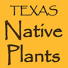 This sight lists the native plants in Texas of 2012. It also includes details about the environments the plants will flourish in, which the students need to know.