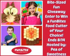 Bite-Sized Fun Giveaway! Win a FunBites Food Cutter of your choice! (ends 8/14)