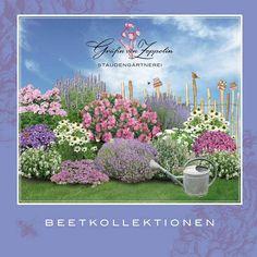 Gartenplanung leicht gemacht: Modernes Trendbeet, edler Gestaltungsklassiker oder farbenfrohes Ensemble - mit unseren Beet-Ideen ist der Weg zum persönlichen Traumgarten ganz leicht. Unsere Beetkollektionen sind komplette...