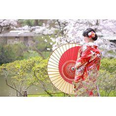 【kaoriwedding】さんのInstagramをピンしています。 《#プレ花嫁#2016秋婚#前撮り#色打掛#和装#着物#和傘#金沢和傘#松田和傘店#横浜#三渓園#庭園#春#桜#結婚式#結婚#婚約#スタジオアクア#ロケーションフォト#ウェディングニュース#wedding#Yokohama#Sankeien#engagement#spring》