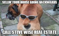 Steve Wise Real Estate Albury