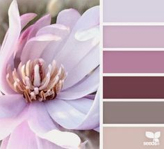 Michelle - Blog #Home #colors - #Spring Fonte : http://design-seeds.com/