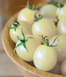Italian Ice Tomato Seeds | White Tomato | Italian Ice - Urban Farmer
