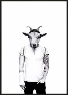 Hipster goat | Sanna Wieslander
