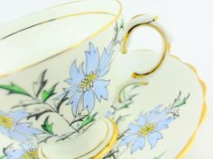Rosina cup and saucer  fine bone china high tea party...make it yours!
