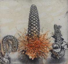 jorg schmeisser Work In Australia, Australian Artists, Botanical Art, Graphic Design Illustration, Painting & Drawing, Printmaking, Drawings, Prints, Inspiration