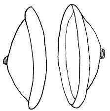 quarter note clip art cliparts logo pinterest
