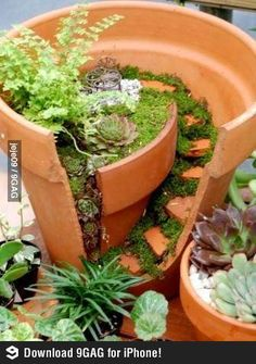 Great idea for a broken pot!