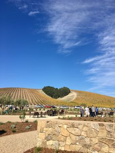 Niner Wine Estates Paso Robles California Wine Country affordable weekend trip