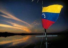 #Venezuela El mejor país del mundo! Foto de @tepuyero en #RioNegro #Amazonas... #SoloConExploraTreks #venezuelaes #instaLOVEnezuela #elnacionalweb #landscape #SouthAmerica #Suramerica