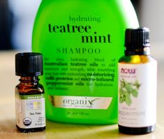 homemade tea tree mint shampoo. And use Camellia Oil for conditioner.
