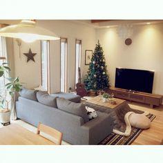 模様替え/クリスマスツリー/もちもちクッション/こたつ天板DIY/こたつ…などのインテリア実例 - 2015-11-08 14:18:05 | RoomClip(ルームクリップ)