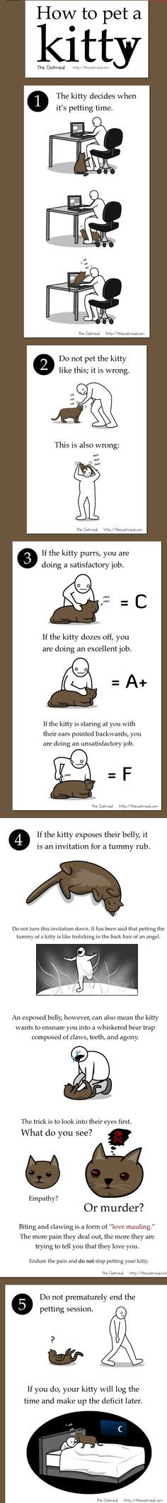Lol! so true! :) How to pet a kitty by Matthew Inman of the Oatmeal, Funny and insightful comic for cat lovers.