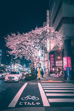 Shibuya, Tokyo - 15 Truly Astounding Places To Visit In Japan Aesthetic Japan, Japanese Aesthetic, City Aesthetic, Night Aesthetic, Purple Aesthetic, Travel Aesthetic, Aesthetic Vintage, Aesthetic Girl, Aesthetic Backgrounds