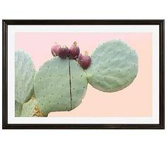 "Ripe Prickly Pear Framed Print by Jane Wilder, 42 x 28"", Ridged Distressed Frame, Black, Mat"