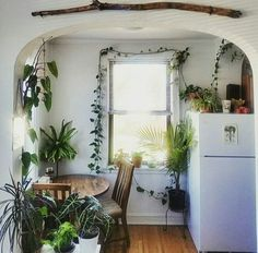 10 Tips How To Build A Lightweight House Decoration Design - Plant-filled kitchen- so lovely! The Best of home indoor in Interior Exterior, Interior Design, Houses Architecture, House Ideas, Decoration Inspiration, Decor Ideas, Home And Deco, Design Case, House Goals