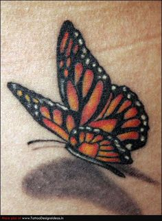 017 - Monarch Butterfly Tattoo - Love the shadow effect - different colors… Realistic Butterfly Tattoo, Monarch Butterfly Tattoo, Butterfly Tattoo Cover Up, Butterfly Tattoo Designs, Butterfly Photos, Cute Butterfly, Orange Butterfly, Miami Ink Tattoos, 3d Tattoos