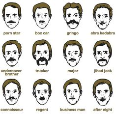 Vote for your favourite Mo for our staff to grow!    #Movember #mo