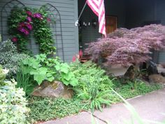 """""""Deer resistant"""" front area, pondless water feature"""
