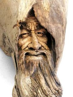 All wise keeper of the secret Gnome mans land in the hidden forest.  Artist (carver) Nancy Tuttle