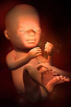 Week by week 21 baby development Pregnancy Checklist, Pregnancy Calendar, Pregnancy Labor, Pregnancy Health, Pregnancy Workout, Weekly Pregnancy, Pregnancy Months, 21 Weeks Pregnant, Pregnant Diet