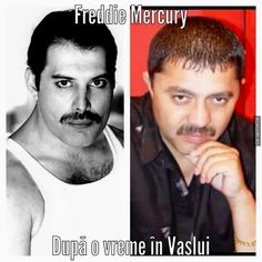 Funny Pics, Funny Pictures, Freddie Mercury, Humor, Memes, Movie Posters, Fictional Characters, Fanny Pics, Fanny Pics