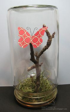 These wide-mouth glass jars were Almond Butter and Salsa jars!      I got this idea from Crafts Unleashed. After pruning our trees, I got a...