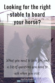 Looking for a stable to board your horse? Here is what you need to look for, and a list of questions you need to ask when you visit. via Hoofbeats and Ink