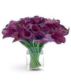 One of my favorite flowers :)