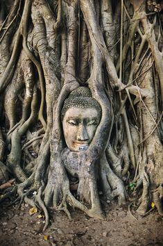 Angkor Wat , Cambodia. S)