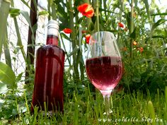 Preserves, Pickles, Alcoholic Drinks, Food And Drink, Fairy, Cooking Recipes, Plant, Preserve, Chef Recipes