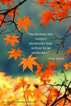 #memories are simply #moments that refuse to be ordinary