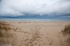 my inner city light Baltic Sea, City Lights, Terrier, Autumn, Beach, Water, Life, Outdoor, Gripe Water