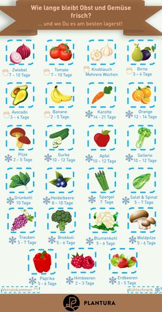How long does fruit and vegetables stay fresh? - If the harvest was good, the question arises of how best to store all the fruits and vegetables. We show you how long the different fruits stay fresh a Chicken Feed, Diy Chicken Coop, Fruit And Vegetable Storage, Different Fruits, Diy Projects For Beginners, Vegetable Garden Design, Eat Smart, Food Facts, Vegan Lifestyle