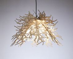 Abstraction Pendant Light, Winter Branches, White By Perhacs Studio - contemporary - ceiling lighting - Supermarket Bathroom Ceiling Light, Ceiling Light Fixtures, Ceiling Lights, Branch Chandelier, Dining Chandelier, Chandeliers, Contemporary Decorative Pillows, Rustic Pendant Lighting, Organic Shapes